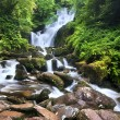 Torc Waterfall - Stock Photo