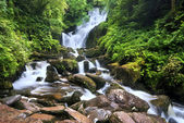 Cascada de torc — Foto de Stock
