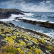 Atlantic Ocean coast — Stock Photo