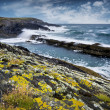 Atlantic Ocean coast — Stock Photo #11485912