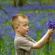 Boys playing in the bluebell woods — Stock Photo #11231095
