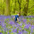 Boys playing in the bluebell woods — Stock Photo