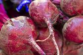 Purple Beets — Stock Photo