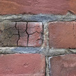Stock Photo: Brick Background98