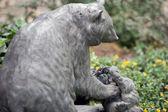медведь семьи в японском саду — Стоковое фото