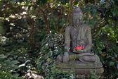 Buddha statue in Japanese Garden — Stock Photo