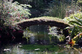 Bridge in Japanese Garden — Stock Photo