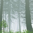 Misty forest landscape - Stock Vector
