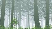 Misty forest landscape — Stock Vector
