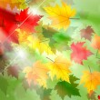 Постер, плакат: Vibrant Autumn Maple Leaf Background