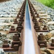 Old railroad — Stock Photo #11074314
