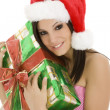 Christmas — Stock Photo #10925011
