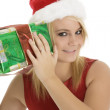 Stock Photo: Christmas