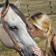 Horse Farm — Stock Photo #11318163