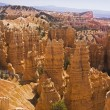 Bryce Canyon National Park — Stock Photo #11409438