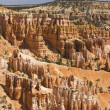 Bryce Canyon — Stock Photo #11506044