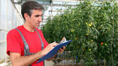 Worker Writing on Clipboard in Greenhouse — Stock Photo