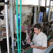 Dairy Business Management - 