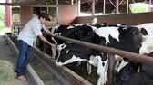 Agricultor em sua fazenda de vaca — Foto Stock
