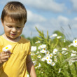 Toddler carrying a flower — Stock Photo