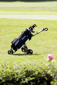 Golfbag on a golf course in summer — Stock Photo