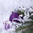 Beautiful christmas decoration in purple and silver on white snow — Stock fotografie