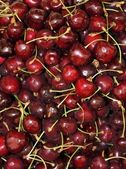 Fresh market produce of Cherries — Stock Photo