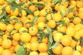Mercado fresco produzir de laranjas — Foto Stock