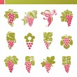 Stock Vector: Red grape with green leaf. Vector logo template set. Elements fo