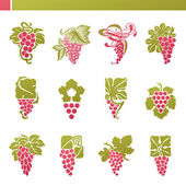 Red grape with green leaf. Vector logo template set. Elements fo — Stock Vector