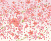 Pink tone background with cherry blossom — Stock Vector