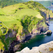 Постер, плакат: The North Devon coastline near Lynton Devon