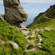 Постер, плакат: The Valley of Rocks near Lynton Devon and coastal path