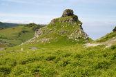 谷岩林茅斯德文郡附近的城堡岩 — 图库照片
