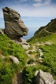 The Valley of Rocks near Lynton Devon and coastal path — Stock Photo