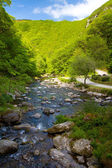 Watersmeet looking down the river towards Lynmouth in Devon — Stock Photo