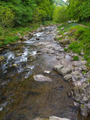 Watersmeet near Lynton and Lynmouth in Devon — Stock Photo
