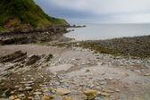 Woody plaży zatoki w pobliżu lynton i lynmouth w devon, anglia — Zdjęcie stockowe