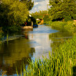 Stock Photo: Bridgwater and Taunton Canal in Somerset England