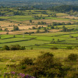 View from the top of Crook Peak in Somerset England — Stock Photo