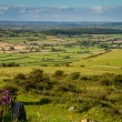 Stock Photo: View from Crook Peak in Somerset England