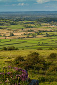 View from Crooks Peak in Somerset England — Stock Photo