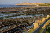 Kilve beach and coastline in Somerset at low tide — Stock Photo