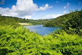 Clatworthy Reservoir in the Brendon Hills Exmoor Somerset — Stock Photo