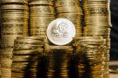Ukrainian coins of european championship — Stock Photo