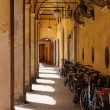 Views of Modena - Stock Photo
