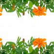 Bright Tagetes flowers frame — Stock Photo #11017411