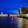 Stock Photo: St. Petersburg, Russiat night