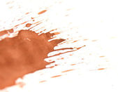 Brown splashes. On a white background. — Stock Photo