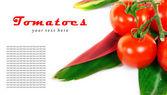 Tomaten und blätter. — Stockfoto